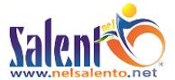 Logo Nelsalento.com